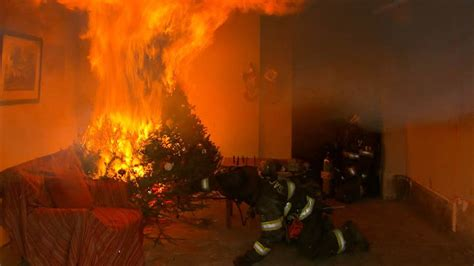 holiday safety tips how to avoid christmas tree fires