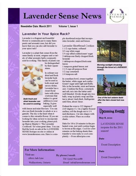publisher templates for newsletters lavender sense newsletter template wilkie