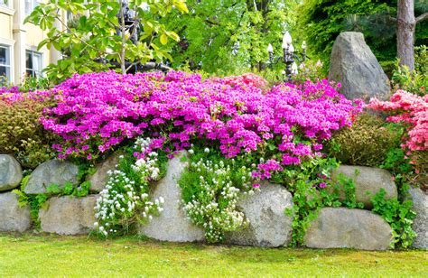 rock garden front yard 101 front yard garden ideas awesome photos