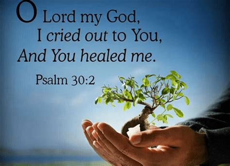 comforting bible verses for the sick 130 bible verses about healing the sick