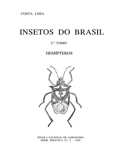 Insetos Do Brasil | Insetos | Zoologia