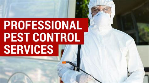 pay  professional pest control services city