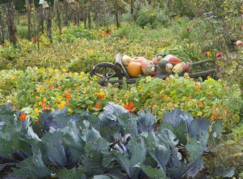 De Jardin 3196 by Que Faire Au Jardin En Octobre