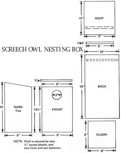 plans on how to build an owl nesting box the hungry owl project audubon birdhouse plans plans to build owl houses