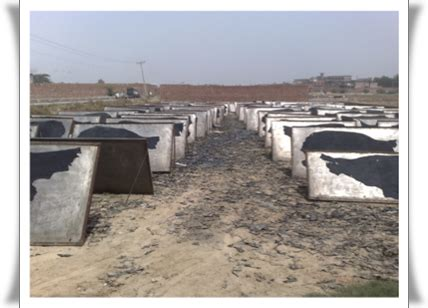 Detoxing Contaminated Soil by Ou Up Wastewater Bioremediation Project