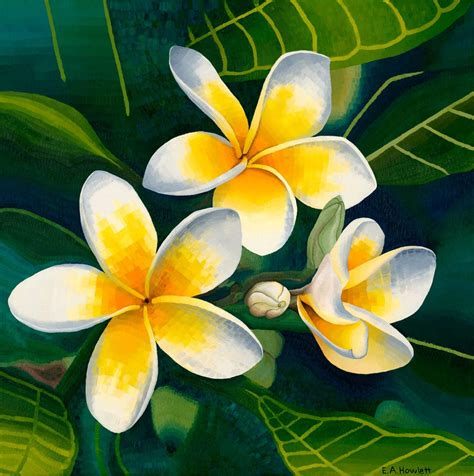 acrylic paint flower image result for frangipani acrylic painting painting