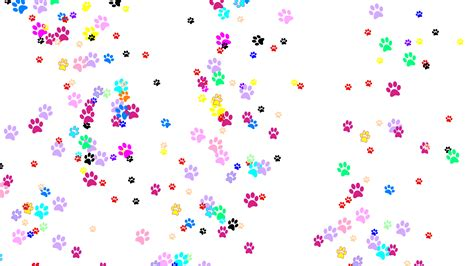 dog print wallpaper dog paws wallpaper