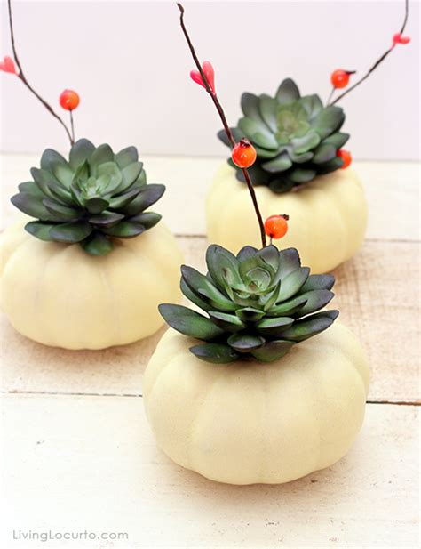 Easy Dinner Party Main Dishes - mini pumpkin succulent centerpiece craft