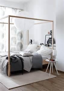 dekorative pflanzen fürs wohnzimmer de pumpink schlafzimmer indisch einrichten