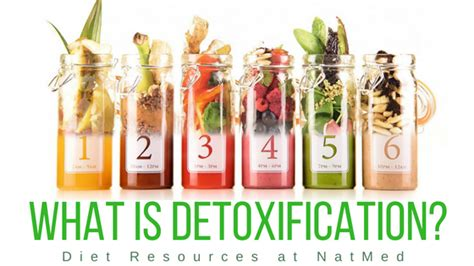 Waht Is Detox by What Is Detoxification Natmed