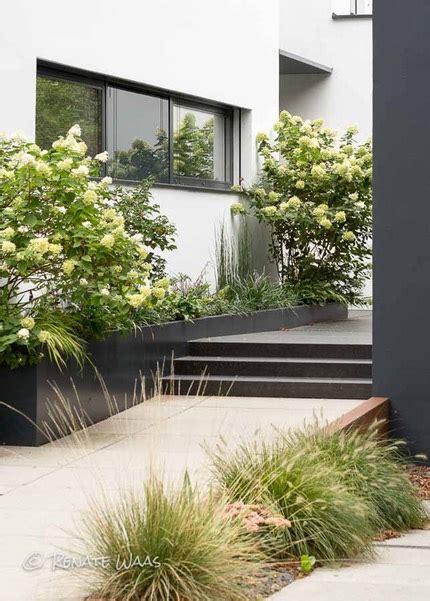 moderner vorgarten bilder vorgarten modern gestalten und pflegeleicht bepflanzen