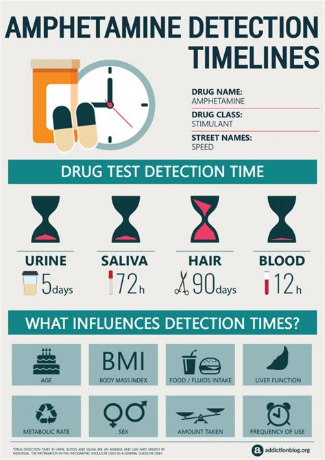 Meth Detox Period by Hetamine Detection Timelines Infographic