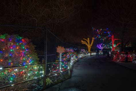 lehigh valley zoo light best 28 valley light spectacular lehigh valley zoo s