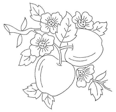 coloring pages of apple blossoms 229 best images about frutas e legumes on pinterest