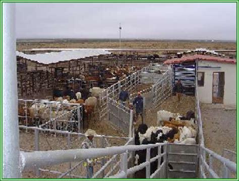 las fotos m 225 s de corrales en instagram construccion de corrales para el ganado