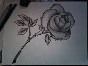 beautiful pencil drawings of flowers drawing pencil