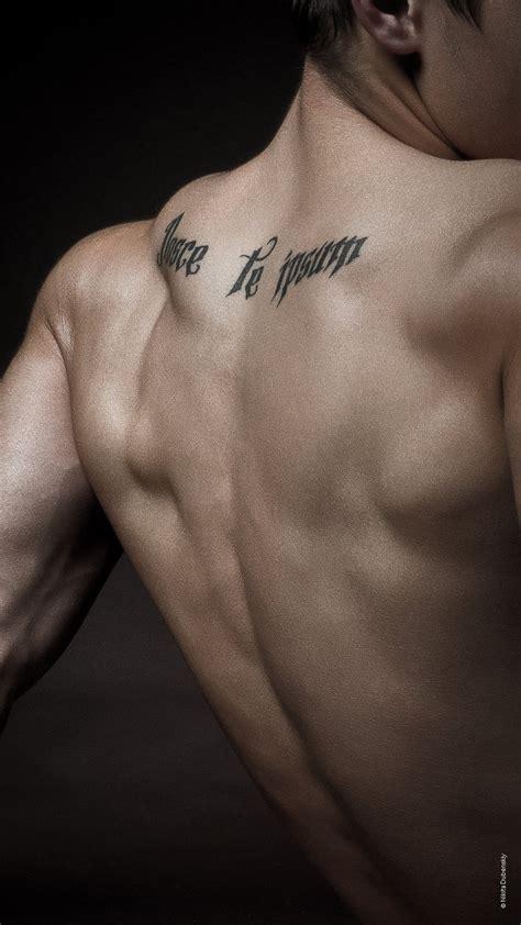 nosce te ipsum tattoo nosce te ipsum by divasoft on deviantart