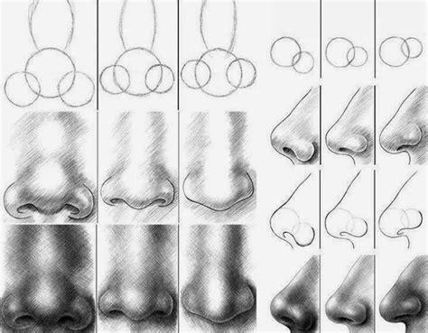 imagenes de narises a lapiz el arte de arantxa como dibujar distintos tipos de