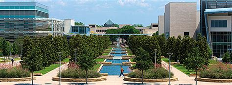 Professional Mba Utdallas by Faculty And Staff The Of At Dallas