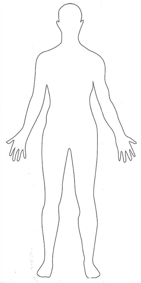 outline diagram human outline printable diagrams for all