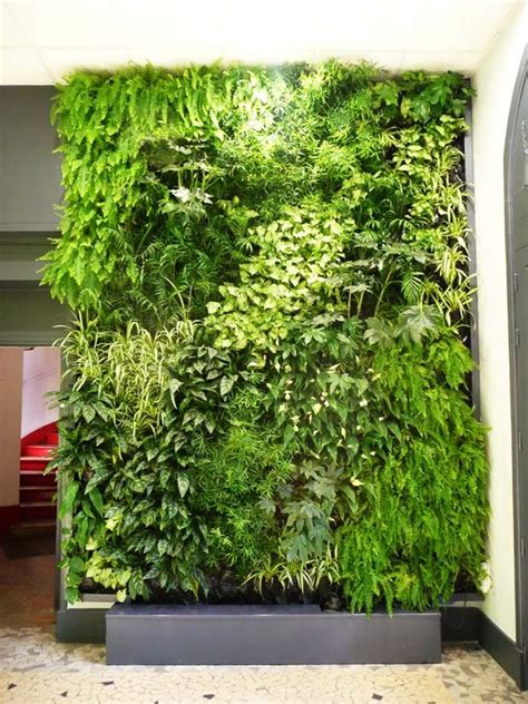 vertical garden  real sensation     heart