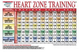 Heart zone training the training fix