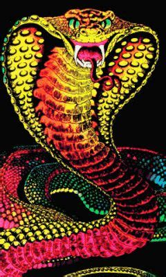 animated snake wallpaper gallery