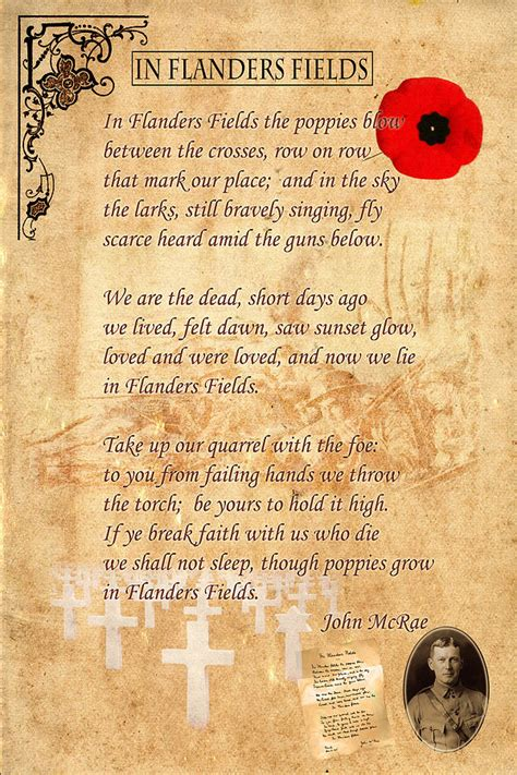 printable version of flanders fields in flanders fields photograph by andrew fare