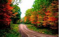 Desktop Wallpapers Autumn Road