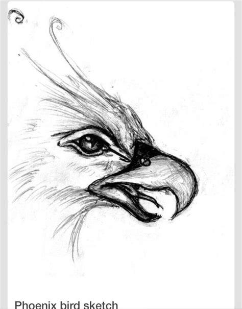 phoenix tattoo head 124 best images about ave f 233 nix phoenix bird on