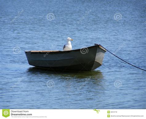 boats birds boat with bird royalty free stock image image 2813776