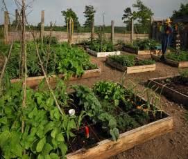 best garden square foot gardening
