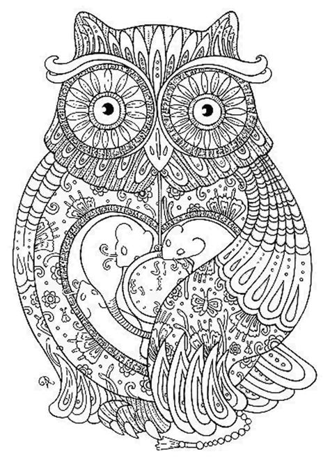 coloring pages adults owl owl coloring pages for adults printable kids colouring