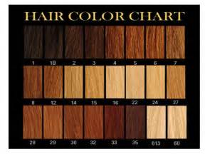brown hair color chart brown hair color chart hair style