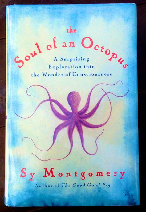 remember who loved you tiny book series volume 3 books book review soul of an octopus polly castor