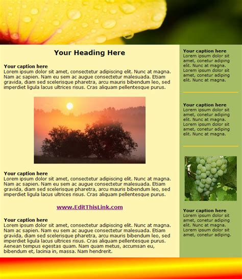 Newsletter Template by Free Html Newsletter Templates 171 Heavensgraphix