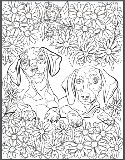 coloring pages for adults dogs de stress with dogs downloadable 10 page coloring book