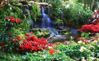 garden flowers and plants nature landscapes garden plants flowers pool trees colors