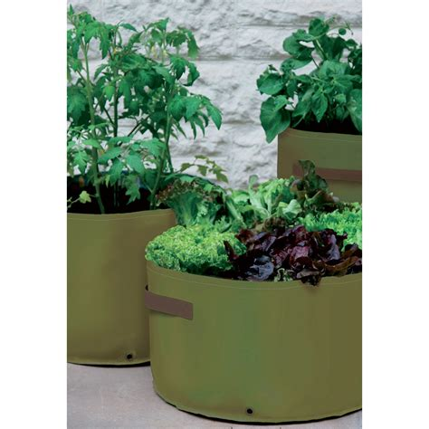 Haxnicks Patio Planters by Vegetable Patio Planters Haxnicks