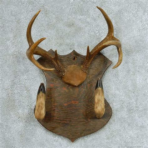 whitetail deer antlers gun rack for sale 13320 the