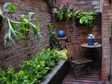 Indoor Window Planter Boxes - modern staghorn hanging garden contemporary landscape new york by r a nelson plantsman