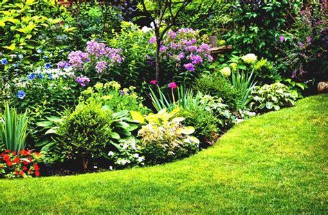 aiuole per giardino aiuole giardino tipi di giardini consigli per le