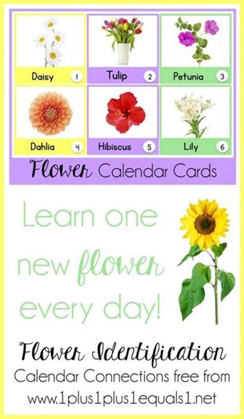 spring themed names 33 best flower theme images on pinterest preschool