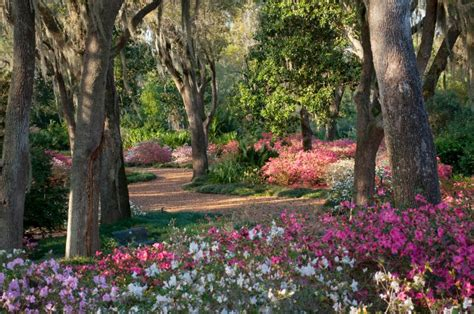 Bok Tower Garden by Study Reveals The Root Of Guest Experiences At Bok Tower