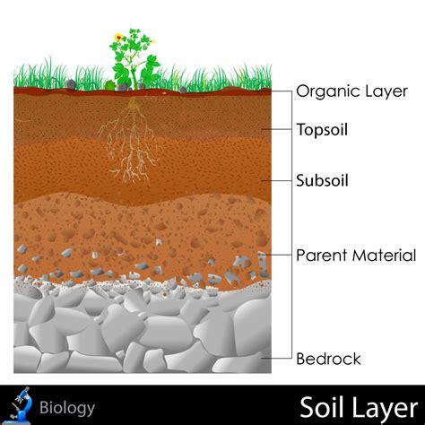 bed rock soil layers kidspressmagazine com