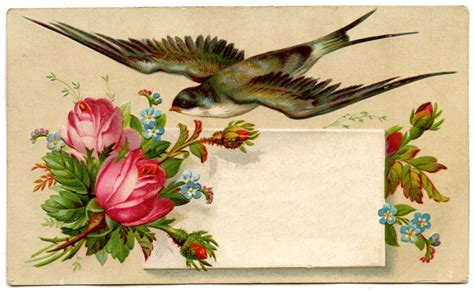 how to make vintage cards vintage image pretty calling card with bird the