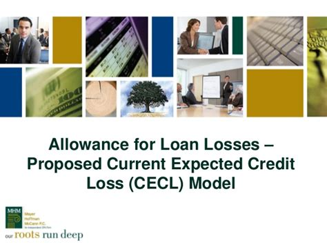 Allowance For Credit Losses Formula Presentation Slides Allowance For Loan Losses Proposed Current Exp