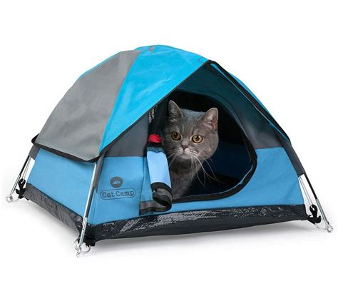 Funny Kitchen Gadgets The Cat Camp Is A Mini Camping Tent For Your Cat