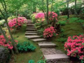Pink Garden Flowers Backyard Flower Garden Pink Decoration Decosee