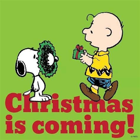 Images Of Christmas Is Coming | christmas is coming pictures photos and images for